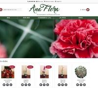 Ana Flora Flores - E-Commerce